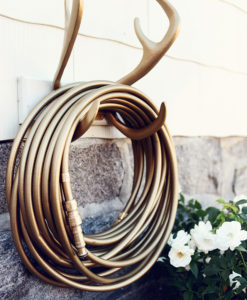 Color Garden Hose Gold Antler Hook Mount