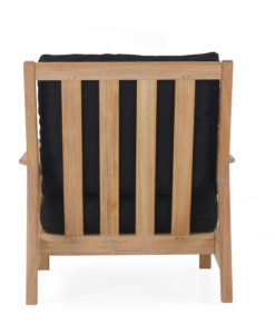 Eva Club Chair Back Modern Teak Contract Pool Furniture