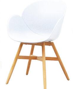 Modern Polypropyleen Teak Dining Chair