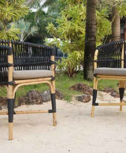 Traditional Powder Coated Aluminum Chair