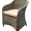 Modern Aluminum Wicker Dining Chair