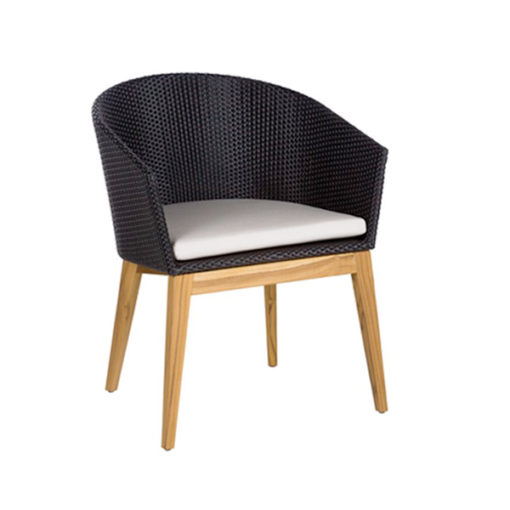 Aries Contemporary Dining Chair