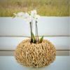 ADORE driftwood twig wood teak lantern round decor vase Nature Home Decor Contract